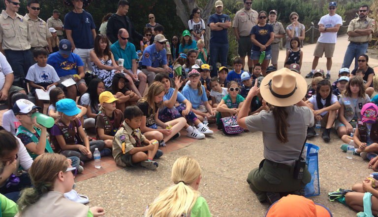 Scouts clean a national park's sticky situation