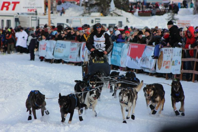Eagle dog sledding veteran posts best result in Iditarod